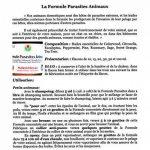 Huiles Utiles - La Formule Parasites Animaux - 10 ml de la marque Huiles Utiles image 2 produit