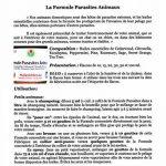 Huiles Utiles - La Formule Parasites Animaux - 10 ml de la marque image 2 produit