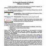 HuilesUtiles - La Formule Fourmis Et Cafards - 10 ml de la marque image 2 produit