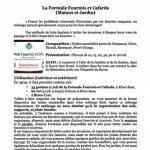 HuilesUtiles - La Formule Fourmis Et Cafards - 30 ml de la marque Huiles Utiles image 2 produit