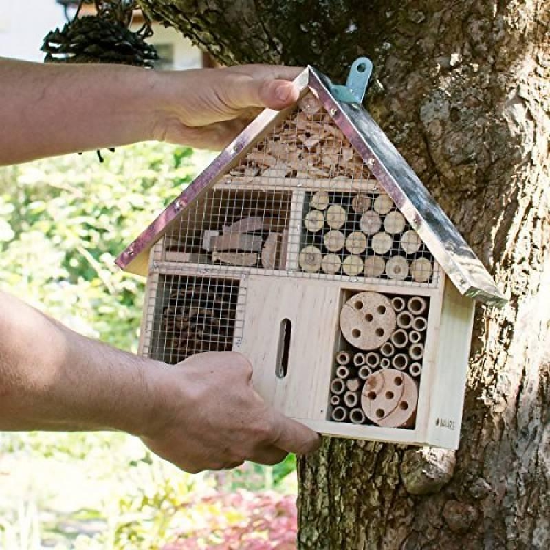 Insecte volant maison faites une affaire pour 2019 stop aux insectes - Maison a insectes plan ...