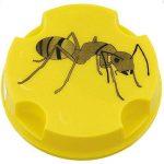 insecticide anti fourmi TOP 10 image 1 produit