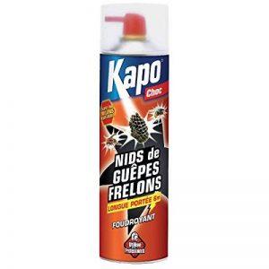 insecticide guêpe TOP 3 image 0 produit