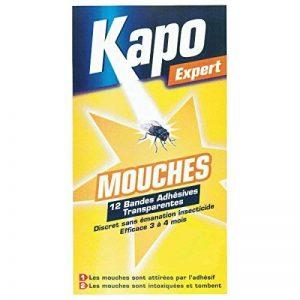 insecticide mouche TOP 2 image 0 produit