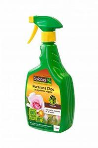 insecticide naturel plantes TOP 9 image 0 produit
