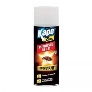 insecticide punaise de lit TOP 13 image 0 produit