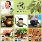 L'huile essentielle d'eucalyptus, huile essentielle 100% naturelle 100ml 3,33 oz, eucalyptus pure et naturelle, meilleur pour un bon sommeil / soulagement du stress / beauté / bain / soin du corps / bien-être / beauté / aromathérapie / détente / massage / image 3 produit