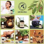 L'huile essentielle d'eucalyptus, huile essentielle 100% naturelle 20 ml 0,66 oz, eucalyptus pure et naturelle, meilleur pour un bon sommeil / soulagement du stress / beauté / bain / soin du corps / bien-être / beauté / aromathérapie / détente / massage / image 3 produit