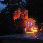 Le Buzz 5.9x 24x 35cm Bug Zapper Lanterne (Tue les guêpes, mouches et moustiques, suspendre ou support dans la maison ou jardin, LED Lampe d'insectes, Alimenté par batterie) de la marque The Buzz image 3 produit