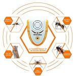 Lemebo Ultrason Souris Anti-Rongeurs Insectes Anti Nuisible Répulsif Rongeurs prise anti moustique repoussant insecte intérieur brancher électronique 2-Paquets de la marque Lemebo image 1 produit
