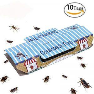 les blattes TOP 9 image 0 produit