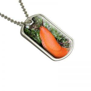 limace cuisine TOP 2 image 0 produit