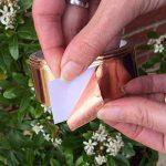 limace dans le jardin TOP 0 image 2 produit