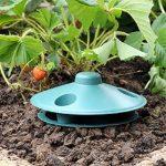 limace dans le jardin TOP 2 image 2 produit