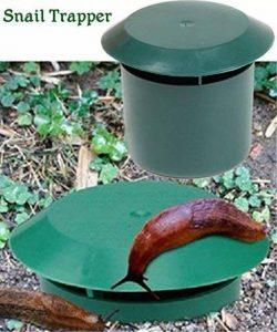 limace dans le jardin TOP 4 image 0 produit