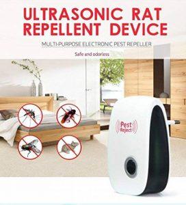 éliminer fourmis maison TOP 6 image 0 produit