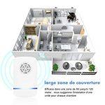 éliminer fourmis maison TOP 8 image 1 produit