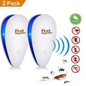 éliminer les fourmis dans la maison TOP 9 image 0 produit