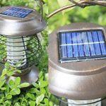 Longra Énergie solaire Lampes de tueur de moustique Lampe portative de moustique électrique Lampe UV Tue-Mouches Destructeur d' Insectes Electrique Tue Mouche Electrique Lampe Insecte (Marron) de la marque Longra Home image 2 produit