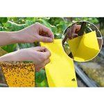 Lot de 10 Pièges à insectes à des fins agricoles- TIANOR Pièges jaunes engluées contre les mouches blanches, mouches des terreaux et pucerons ailés anti-insectes pour plantes, Sécurité et protection de l'environnement (25*15cm) de la marque TIANOR image 3 produit