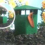 Lot de 2pièges à limace et escargot BIO sans cruauté–Eco de jardinage indispensable de la marque Elizabeth Arden image 1 produit