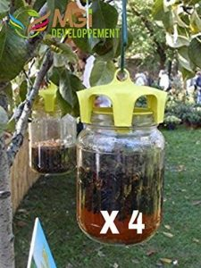 Lot de 4 pièges à guêpes écologique made in Italie de la marque MGI-DEVELOPPEMENT image 0 produit