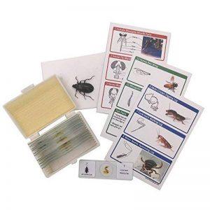 Lot de 48 Lames de Microscope Préparées en Plastique Animaux Insectes Plantes Fleurs + 1 Véritable Spécimen de Papillon Jouet Educatif Scientifique pour Enfants Etudiants de la marque WhizKidsLab image 0 produit
