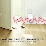 lutter contre fourmis maison TOP 4 image 2 produit