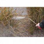 lutter efficacement contre les fourmis TOP 8 image 4 produit