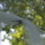 lutter efficacement contre les moustiques TOP 4 image 2 produit