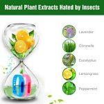 meilleur anti moustique extérieur TOP 4 image 2 produit