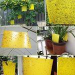 moucheron plante TOP 11 image 4 produit