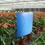 moucheron plante TOP 5 image 4 produit