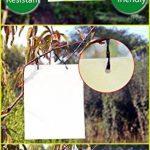 moucherons dans les plantes TOP 7 image 1 produit