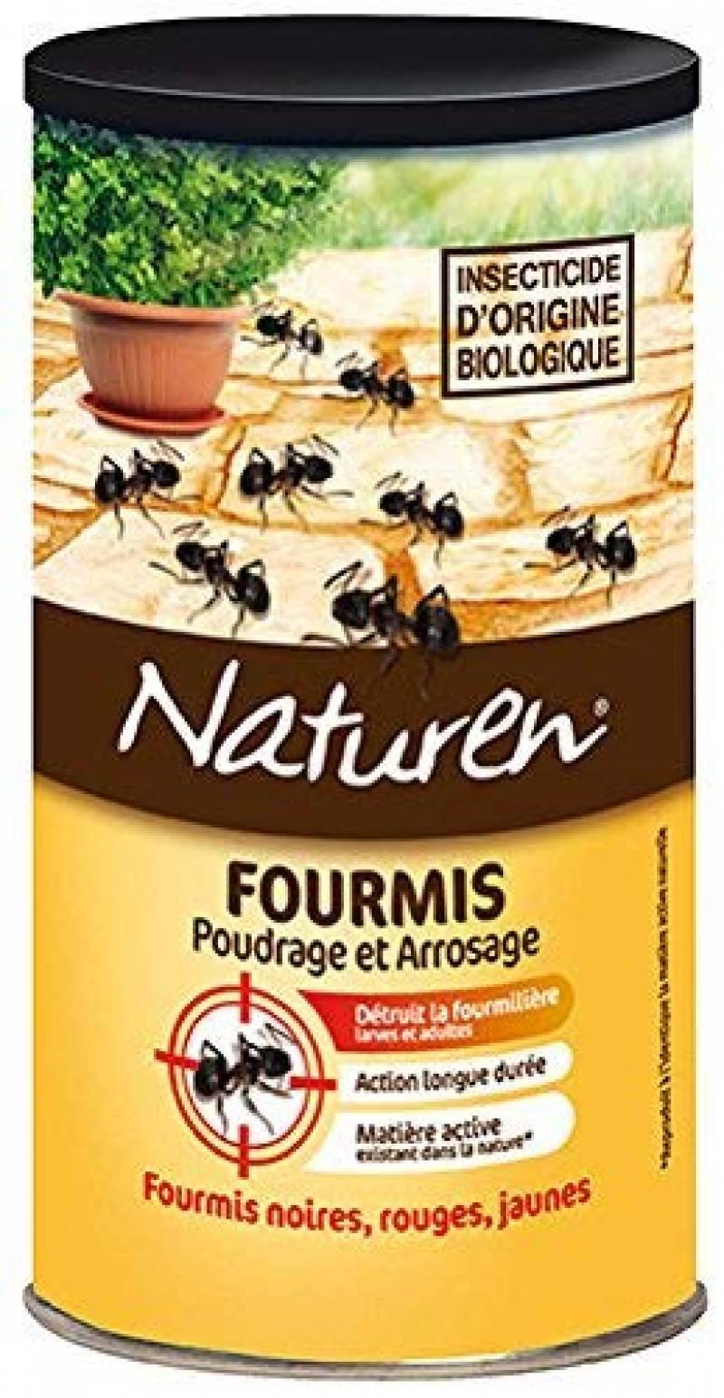 Comment Se Débarrasser Des Fourmis Dans Ma Maison traiter les fourmis dans le jardin ; comment acheter les