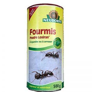 Neudorff 617054 Fourmis Poudre, Vert, 500 g de la marque Neudorff image 0 produit