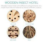 nid de fourmis TOP 7 image 4 produit