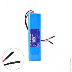 NX Batterie lithium fer phosphate 2S2P IFR18650 + PCM (19.2Wh) UN38.3 6.4V 3Ah de la marque NX image 0 produit