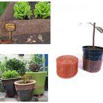 phosphate de fer limace TOP 9 image 3 produit