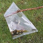 piège à limace TOP 8 image 2 produit