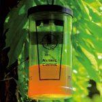 piège à guêpes bouteille TOP 1 image 2 produit
