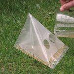 piège à limace naturel TOP 12 image 1 produit
