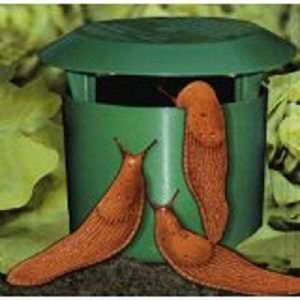 piège à limace naturel TOP 9 image 0 produit