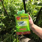 plante anti moustique naturel TOP 5 image 4 produit