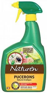 plante anti puceron TOP 6 image 0 produit