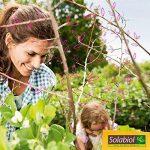plante anti puceron TOP 8 image 2 produit