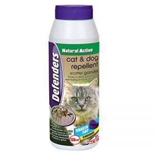 plante répulsif chat extérieur TOP 0 image 0 produit