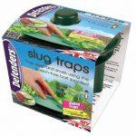 plantes contre les limaces et escargots TOP 1 image 3 produit