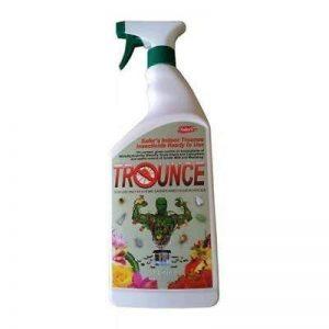 Plus sûre de Trounce insecticide biologique Spray Spider Mite Killer–1L prêt à l'emploi de la marque www.cyber-garden.co.uk image 0 produit