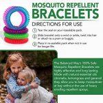 produit contre les moustiques dans le jardin TOP 2 image 3 produit